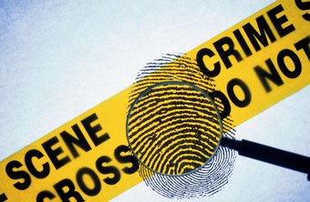 Forensic science technicians collect, preserve and analyze evidence.