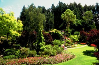 Beautiful landscaping may require the services of a contractor.