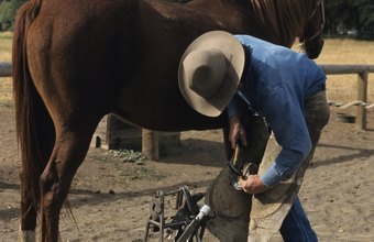 Training and credentials increase a farrier's earning potential.