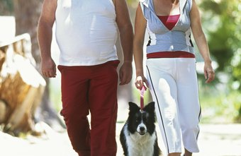 Walk together for a more enjoyable fat-burning experience.