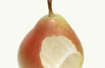 A medium pear contains 101 calories and no cholesterol.