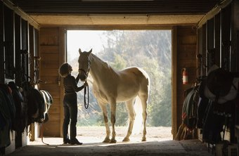 Horse stables are built using grants.