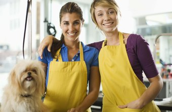 Use advertising to make your dog grooming business a success.