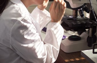 Lab experience can help you get a histology certification.