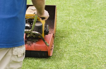 Purchasing and maintaining equipment is the responsibility of a landscaping business owner.