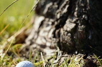 Engage your golf buddies in the search to increase your chance of finding a lost ball.