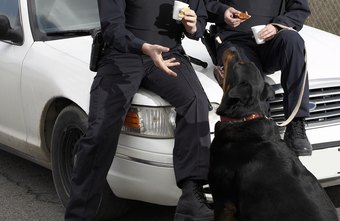 K-9 unit qualifications vary across local, state and federal agencies.