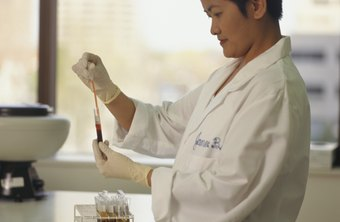 Laboratory technicians perform routine testing duties, such as blood typing.