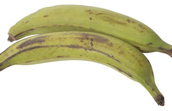 Plantains resemble bananas.