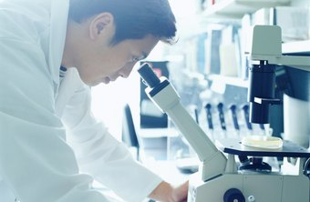 Forensic scientists come from a variety of academic backgrounds.