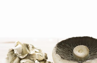 You can eat mushrooms in all phases of the Atkins diet.