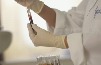 Laboratory Technicians Perform Diagnostic Tests On Blood And Tissue Samples