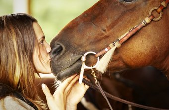A career around horses is a labor of love.