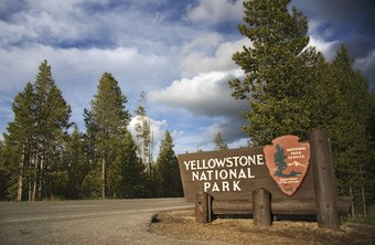 Park ranger managers safeguard both natural resources and park visitors.