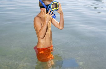 A snorkel may be helpful for a new swimmer.