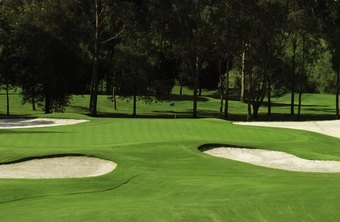 Golf courses are maintained by turf specialists.