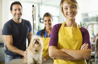 Pet owners rely on a variety of experts for product purchasing advice.