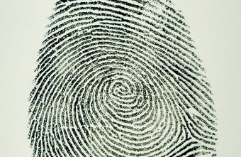Crime lab technicians search for fingerprints on criminal evidence.