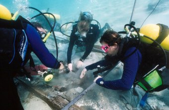 Marine biologists spend time in and on the water, as well as in the lab.