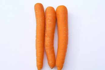 Information about Feeding Dogs Carrots