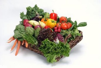 All vegetables get most of their calories from carbs.