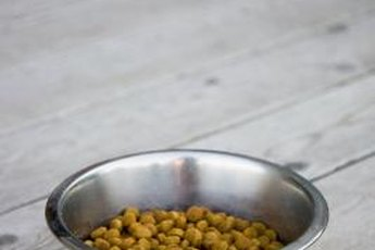 "Rancid dog food may look or smell ""off;"" follow your instinct and throw it out to be safe."