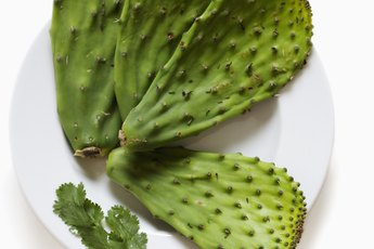 Are Nopales Healthy?