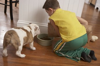 Should You Put Dog Food Near a Pad When Potty Training?