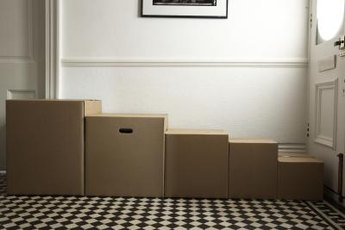 Making a pet tunnel is as simple as repurposing cardboard boxes.