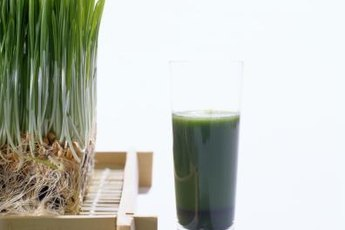 Wheatgrass juice is highly alkalizing.