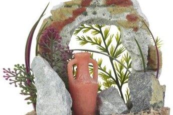 Protozoans and bacteria can form spores that survive dessication on aquarium decorations.