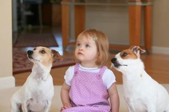 Over time, your dog will learn that the baby is a human.