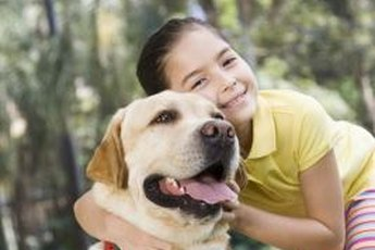Labs are on the list of kid-friendly dog breeds.