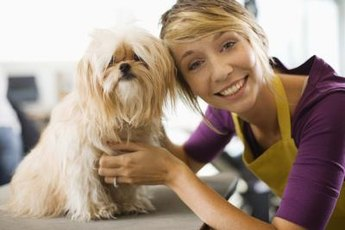 Proper grooming and feeding helps your dog's coat grow.
