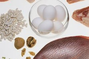 High-quality protein foods contain all the essential amino acids.