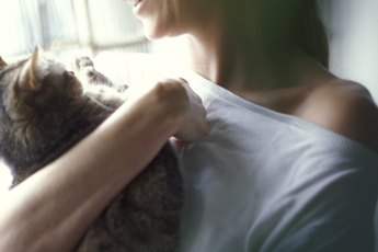Does Petting a Cat Release Endorphins?