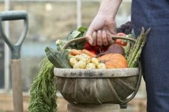 Even a small plot in a community garden can produce a surprising variety of healthful foods.