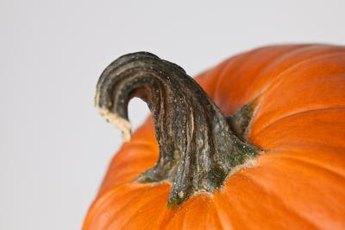 Canned pumpkin can ease diarrhea.