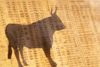 What Does Bullish Mean in Stock Trading?