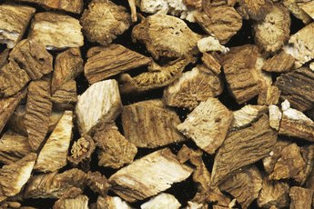 What Are the Benefits of Burdock?