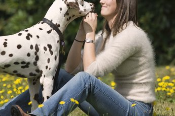 How Do Dogs Show Affection to Humans?