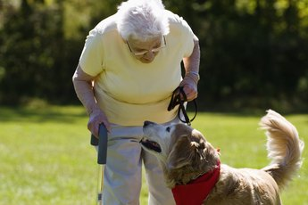 Homeopathic Care for Dog Joint Pain