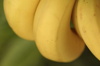 Is a Banana Good for Your Heart?