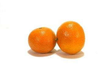 Clementines look like miniature oranges.