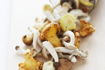 Are Mushrooms a Low-Fiber Food?