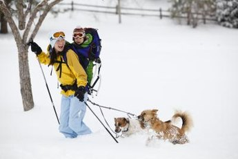 Cross-country skiing is a leisure sport, so you can take in the sights.