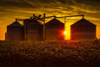 How to Understand Grain Market Prices