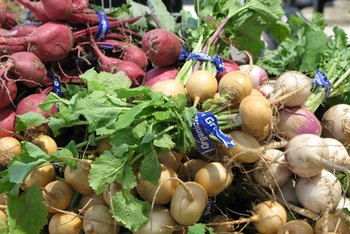 If you seek them out, you might find a rainbow of beautiful yellow, pink and purple turnips.