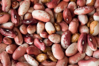 Beans are low-fat sources of protein.