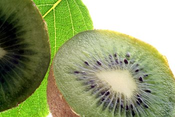 A kiwi is a fat-free, nutrient-dense source of energy.